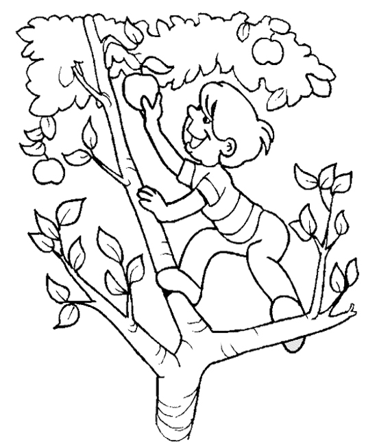 children picking apples coloring pages - photo#2