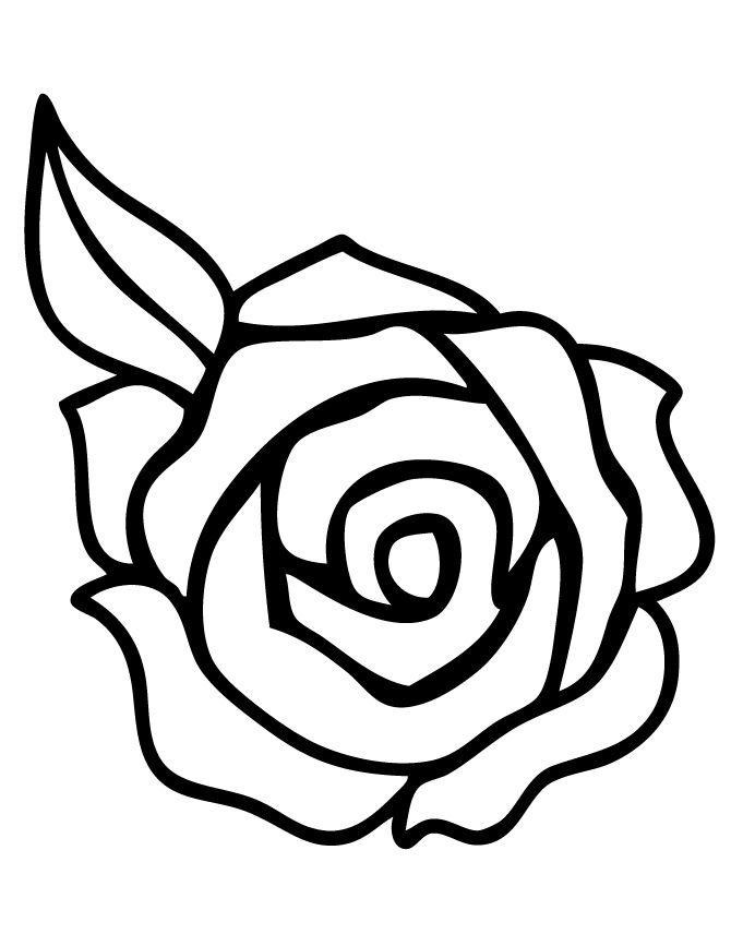 It is a picture of Dynamite Rose Template Printable