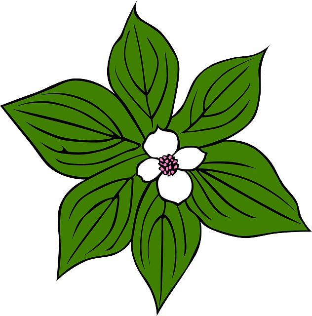 Cartoon Rainforest Leaves - ClipArt Best