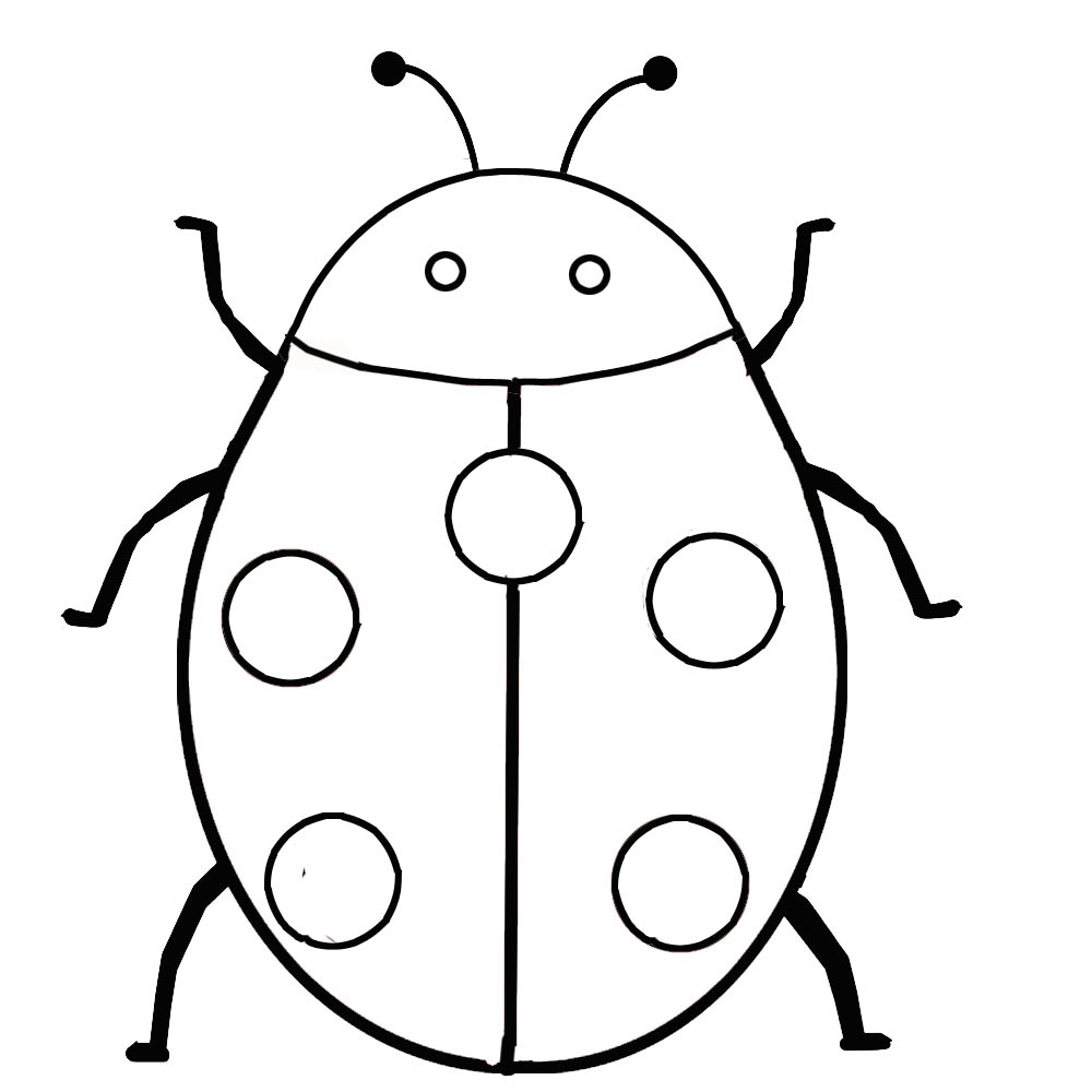Black Line Drawings Of Animals : Line drawings animals clipart best