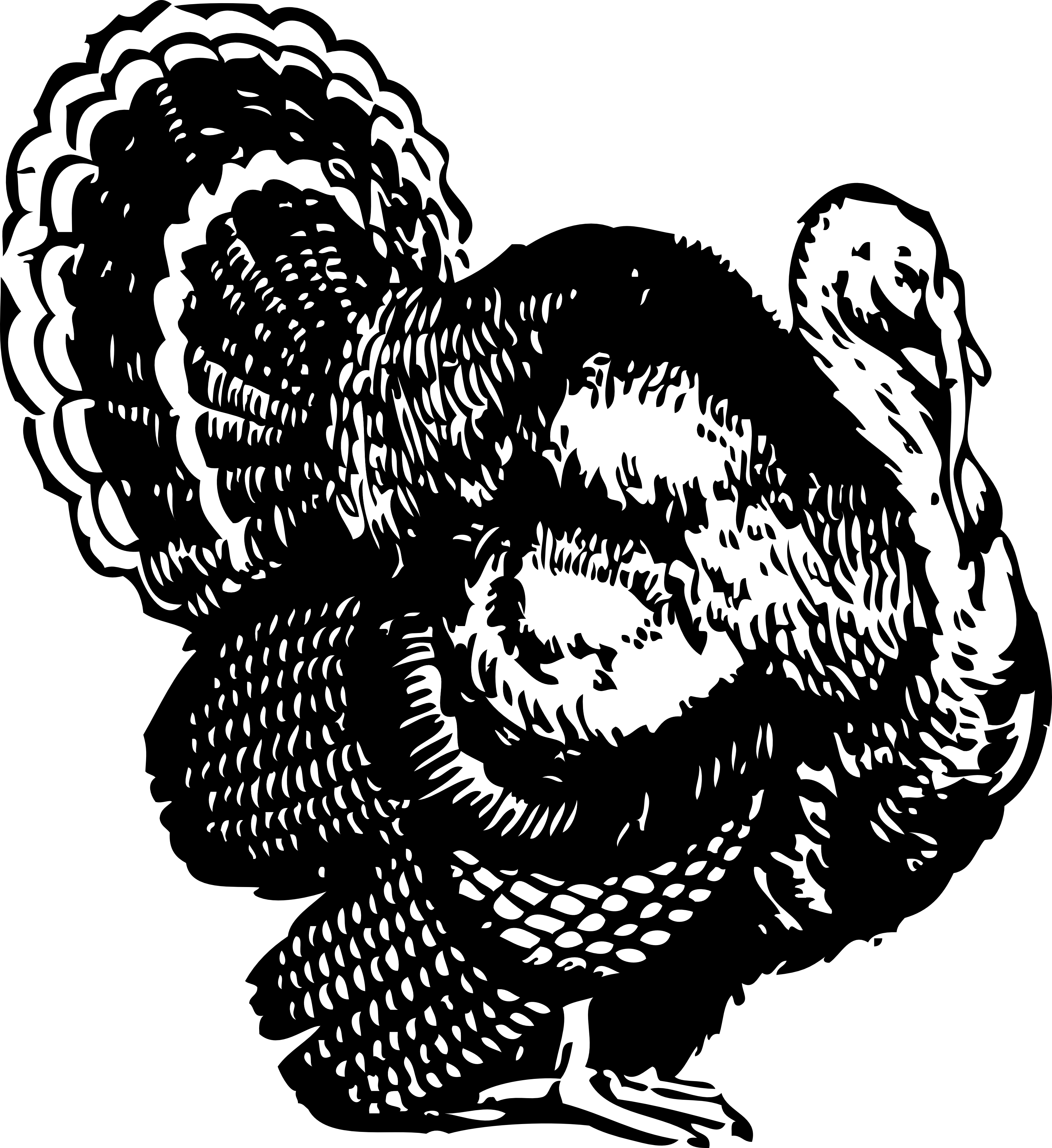 turkey clip art black and white free cliparts that you can download to ...