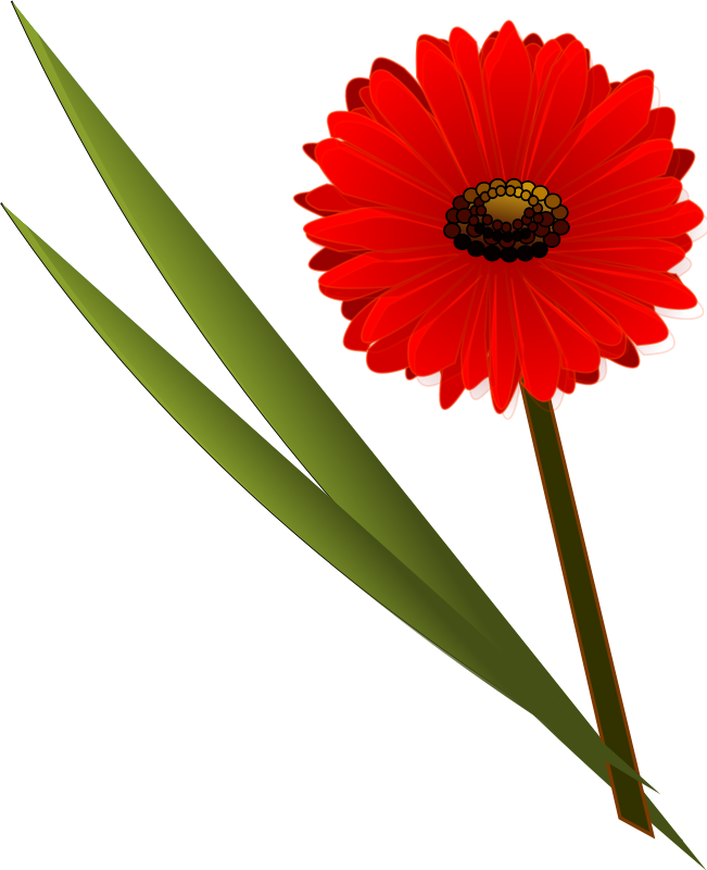 Picture Of Flowers Clipart Best