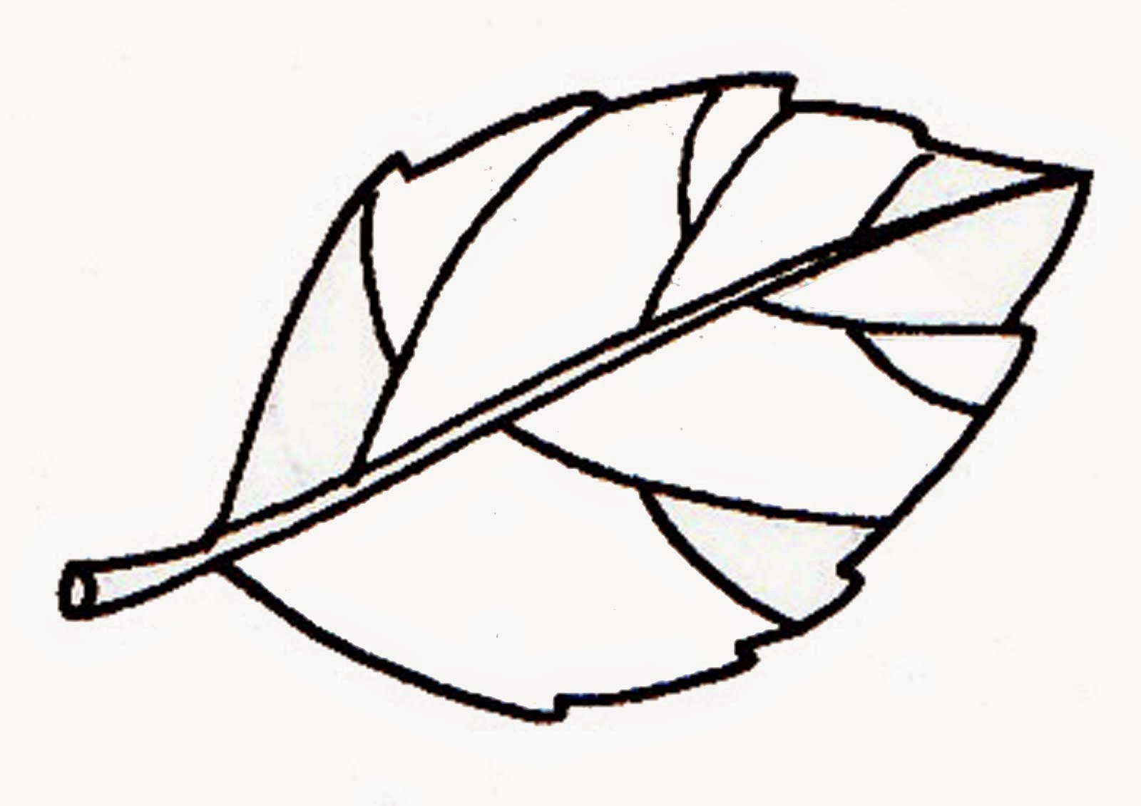 How Plants Send Sugars From Sources To Sinks besides Phone Icon Vector additionally Autonomous Nissan Leafs Start Easy Ride Trials also Leaves Branch 70789 further Tree Branches No Leaves. on picture of leafs