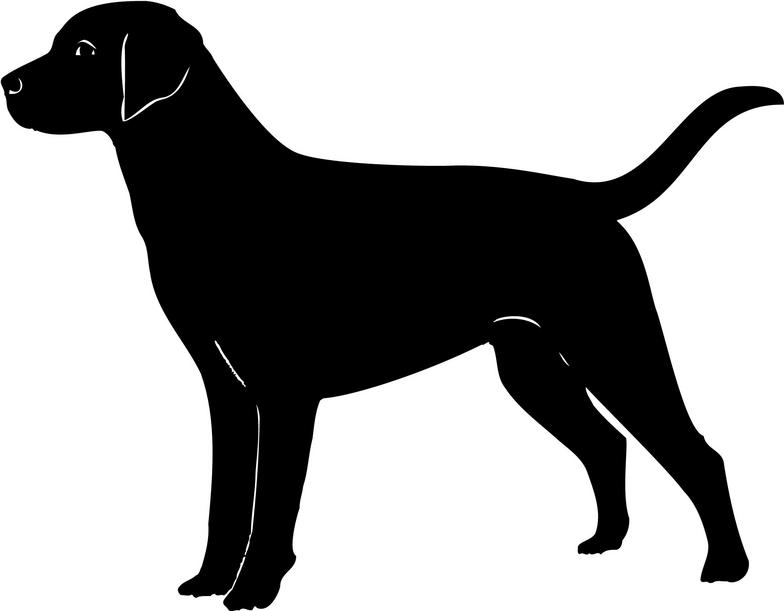 Labrador Silhouette Wall Stickers Creative Multi Pack Wall Decal Art