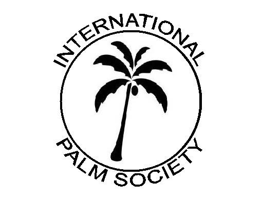 Coconut Palm Tree Clip Art Coconut Palm Tree Clip Art