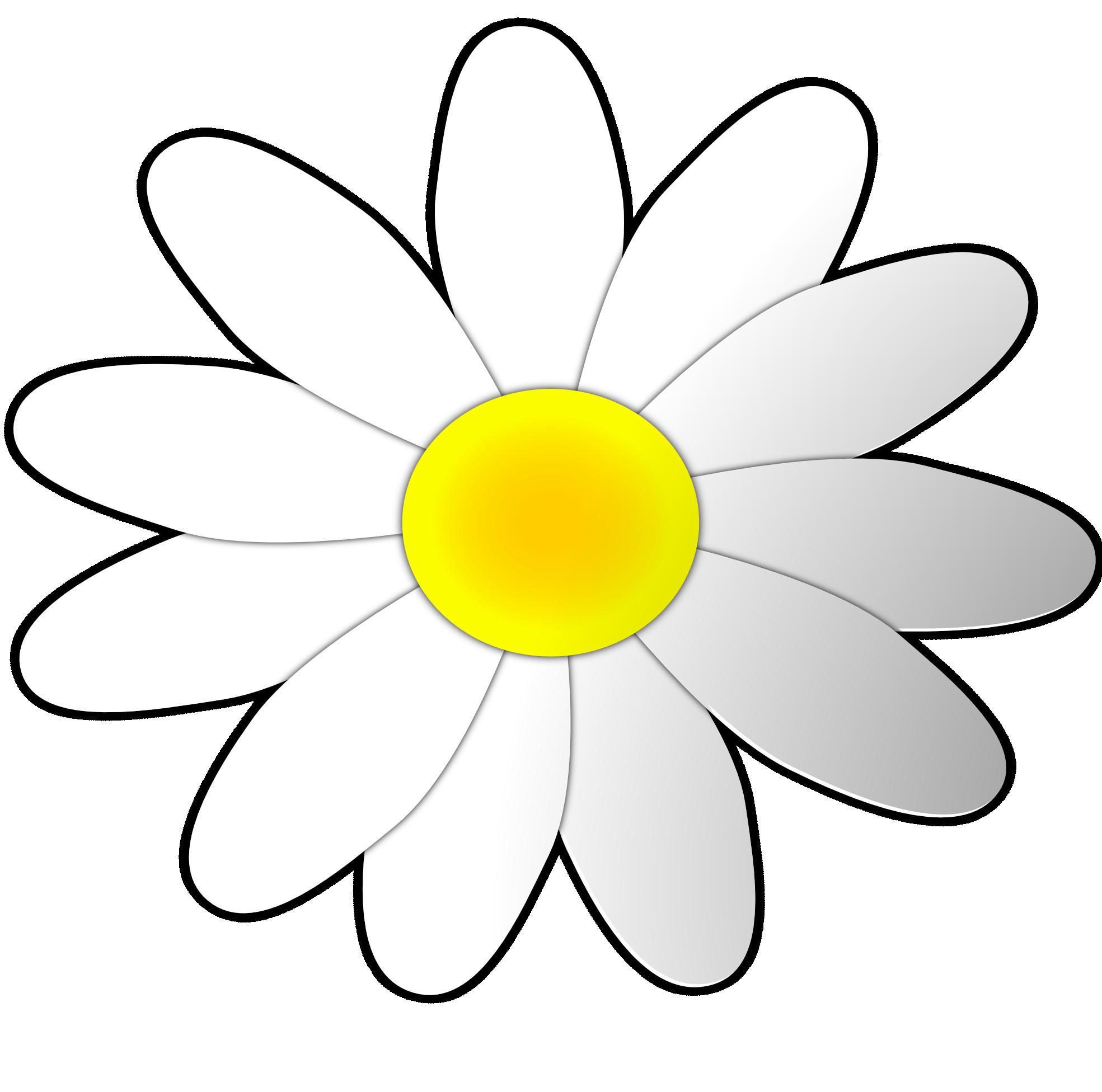 Cartoon Daisy Flower - ClipArt Best White Daisy Flowers Clipart