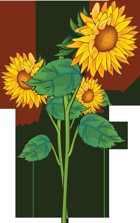 Summer Flowers Clip Art - ClipArt Best