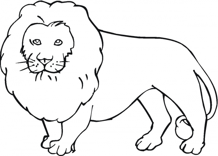 Image Gallery lion outline