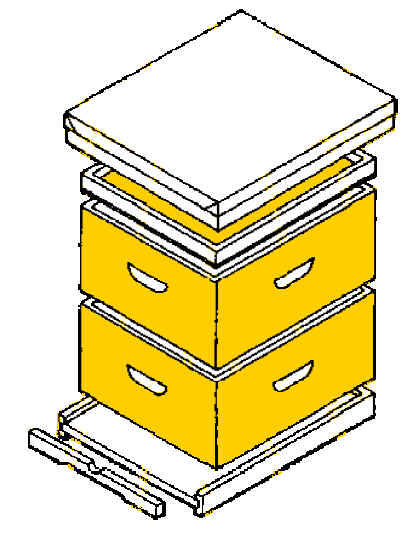 bee hive construction