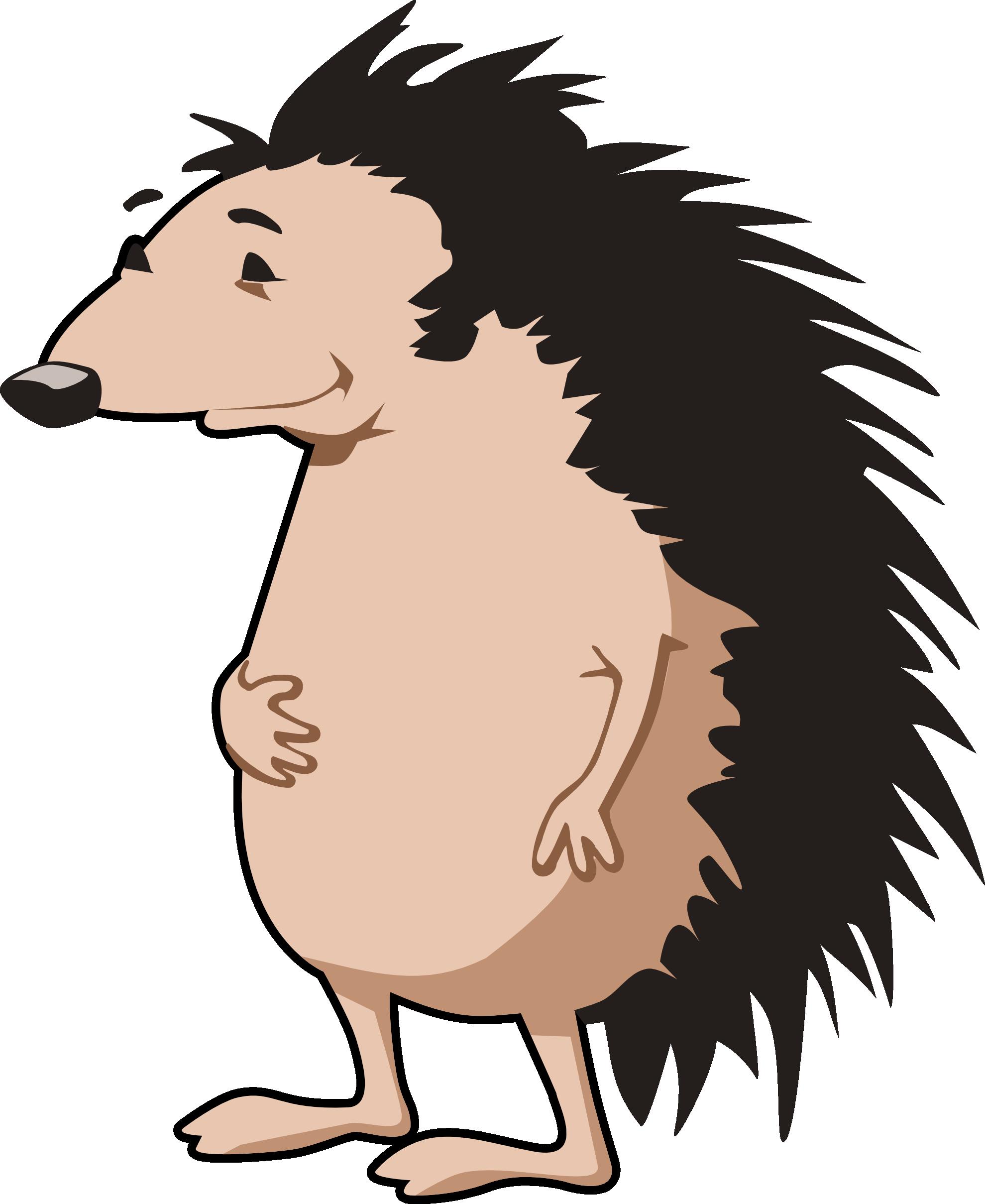 Cartoon Hedgehog Clipart Best