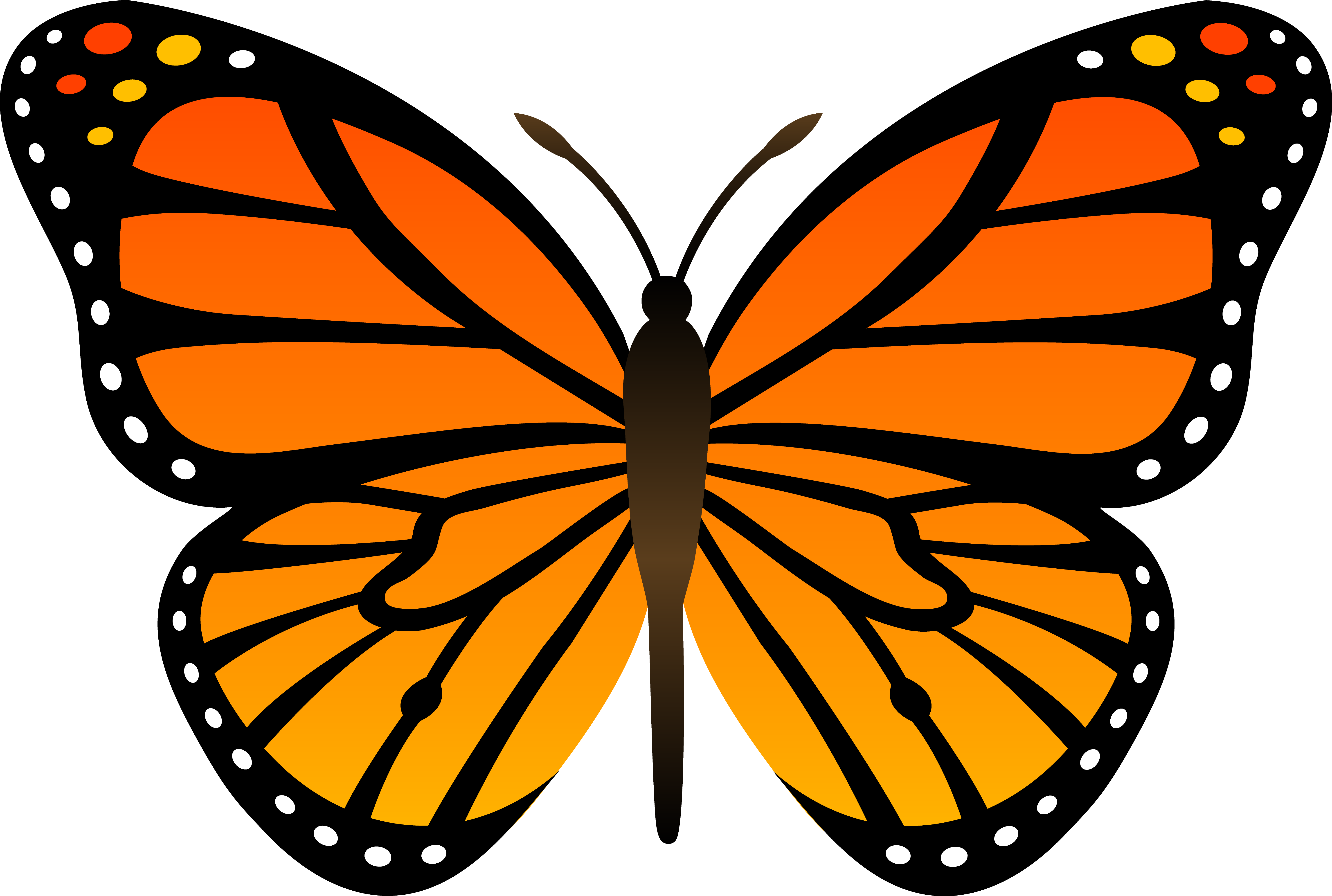 butterflies . Free cliparts that you can download to you computer ...