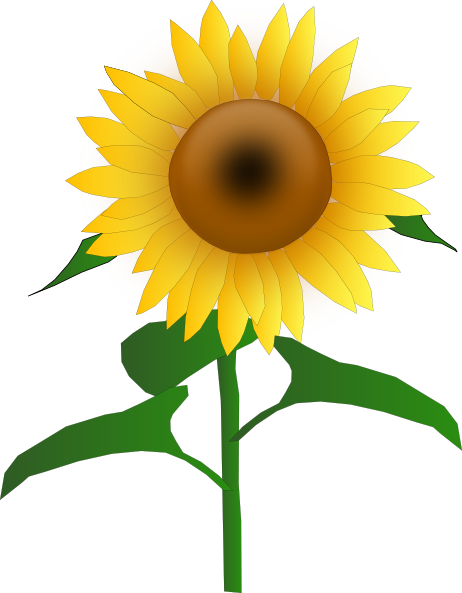 Sunflower Jh clip art Free Vector