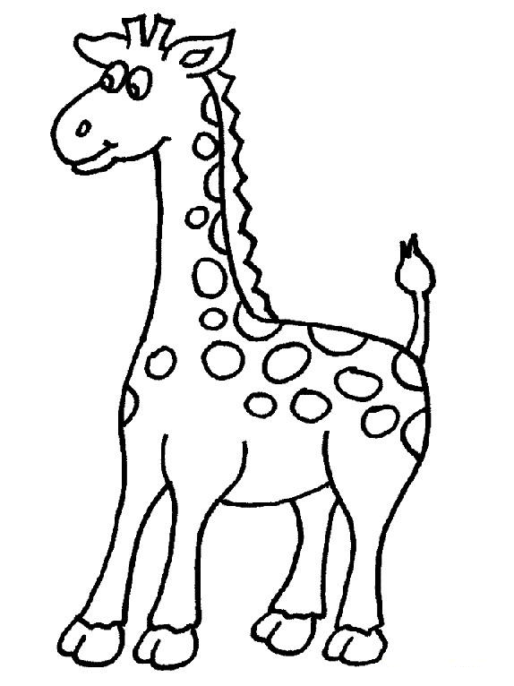 Giraffe Drawing For Kids - ClipArt Best
