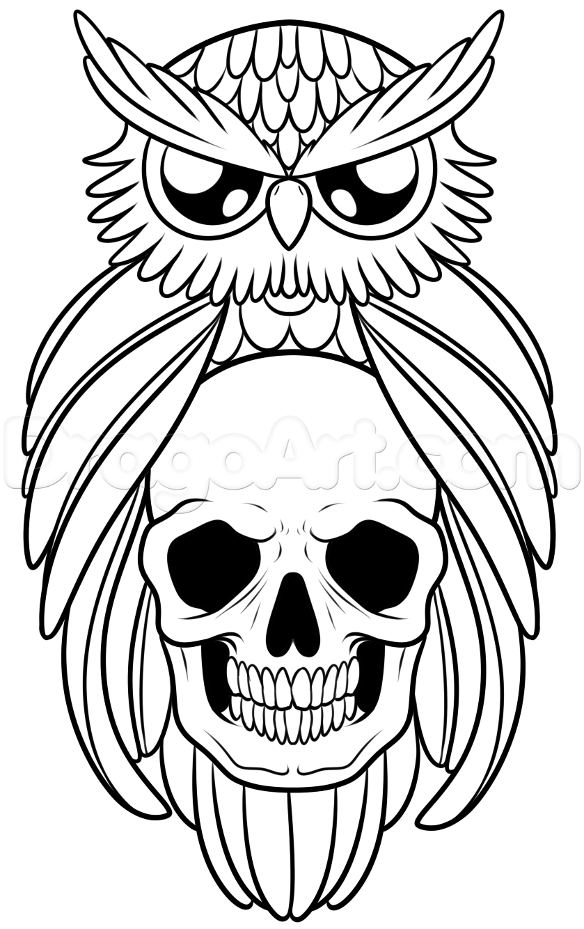 Owl tattoo outline drawing