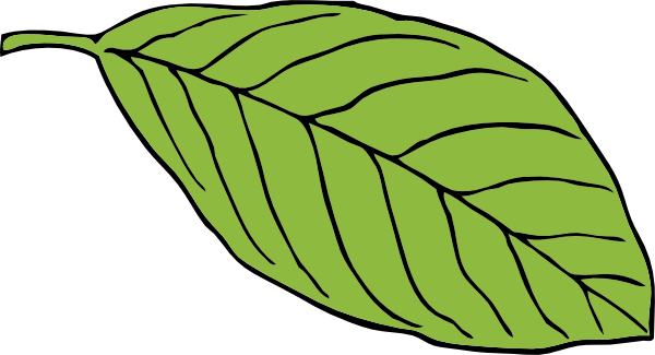 Jungle Leaf Template Printable