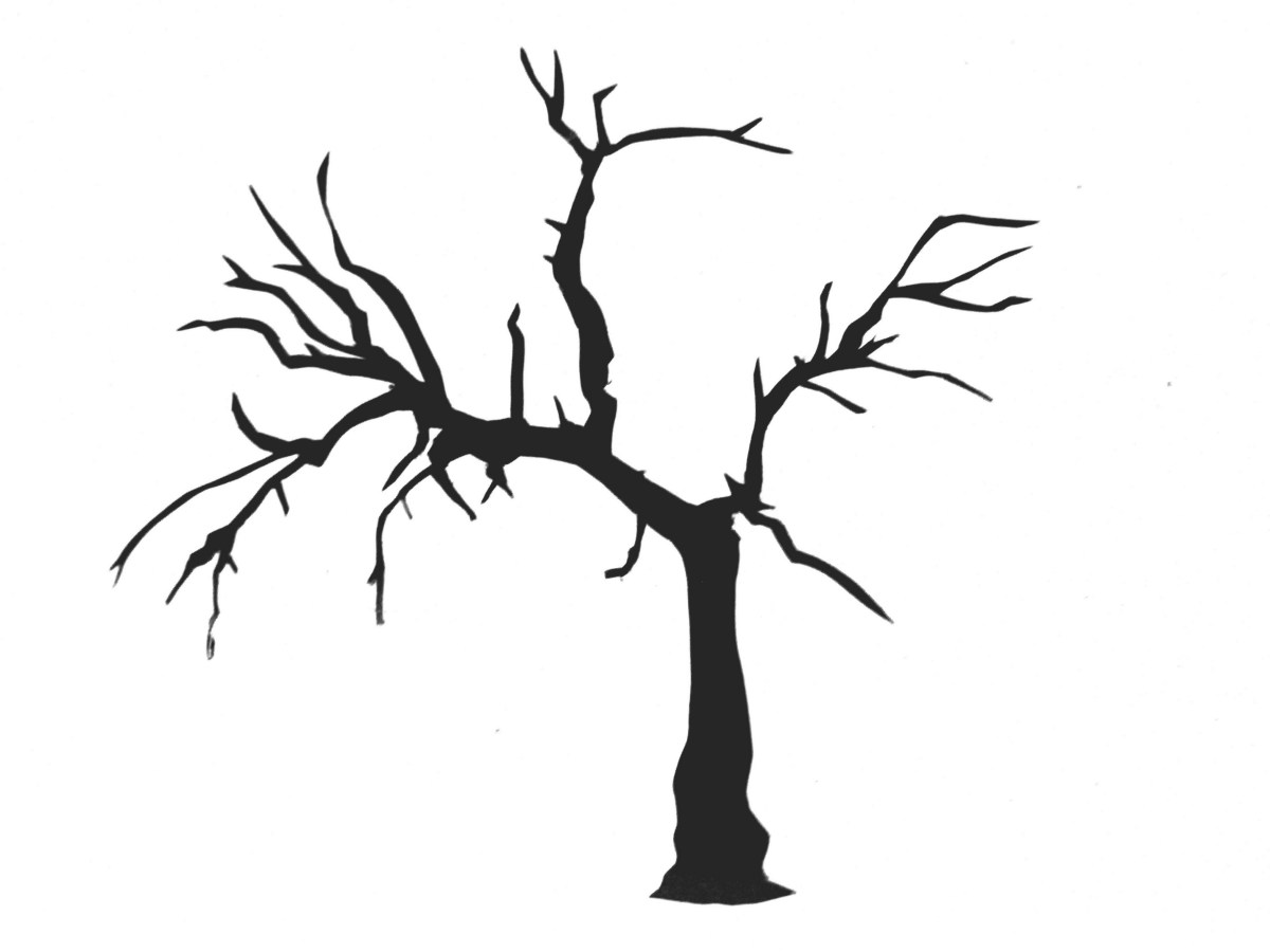 Pictures Of Trees Without Leaves - ClipArt Best