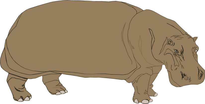 Hippopotamus Clipart - ClipArt Best: www.clipartbest.com/hippopotamus-clipart