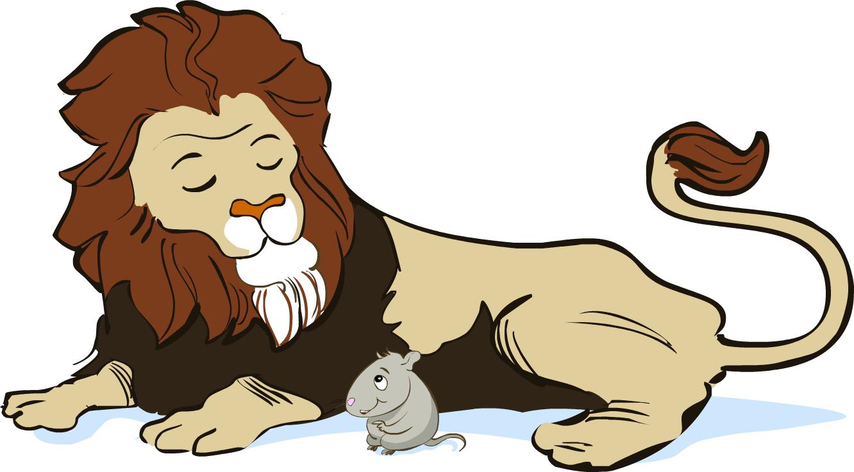 Hewan Lucu 2016 Hewan Animasi Images