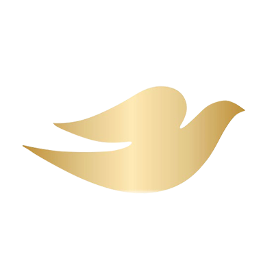 Dove (Dove) on Twitter - ClipArt Best - ClipArt Best