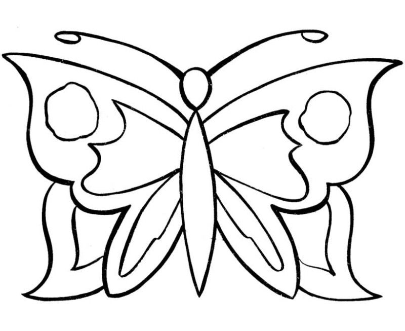 Butterfly Designs Artists Coloring Book : Simple Butterfly Coloring Pages ClipArt Best