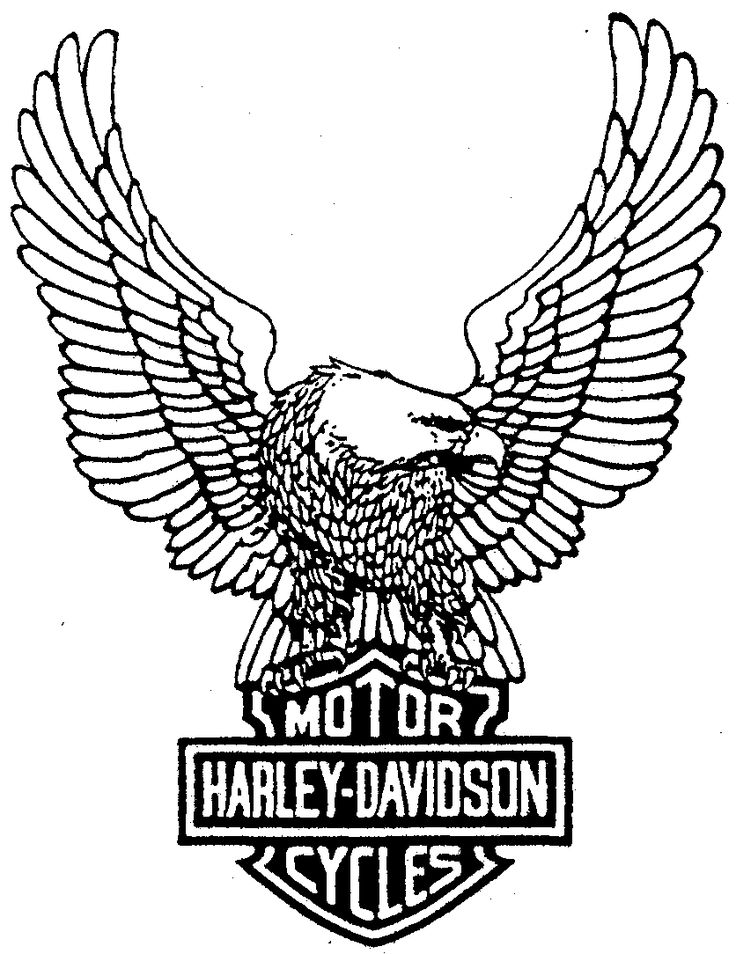 Harley Davidson Eagle Drawing ClipArt Best