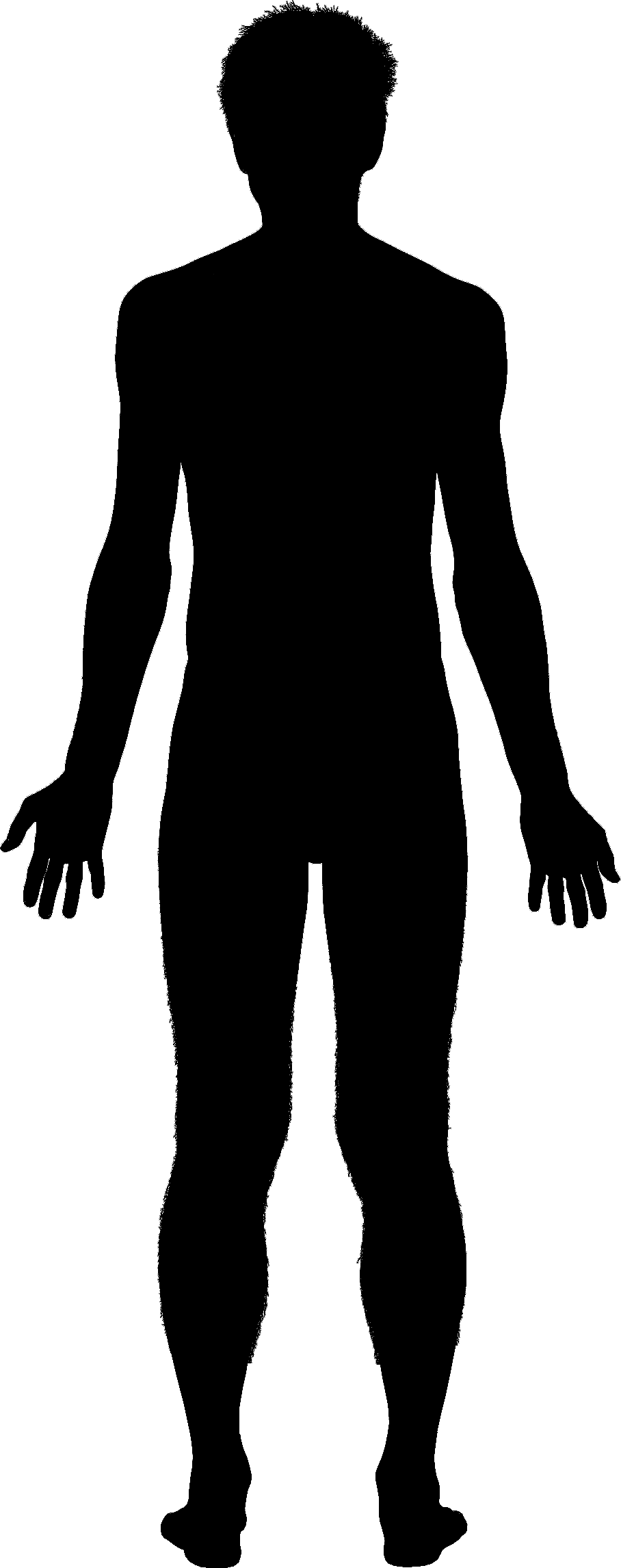 Human body outline clipart male