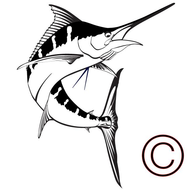 Sailfish Clipart - ClipArt Best