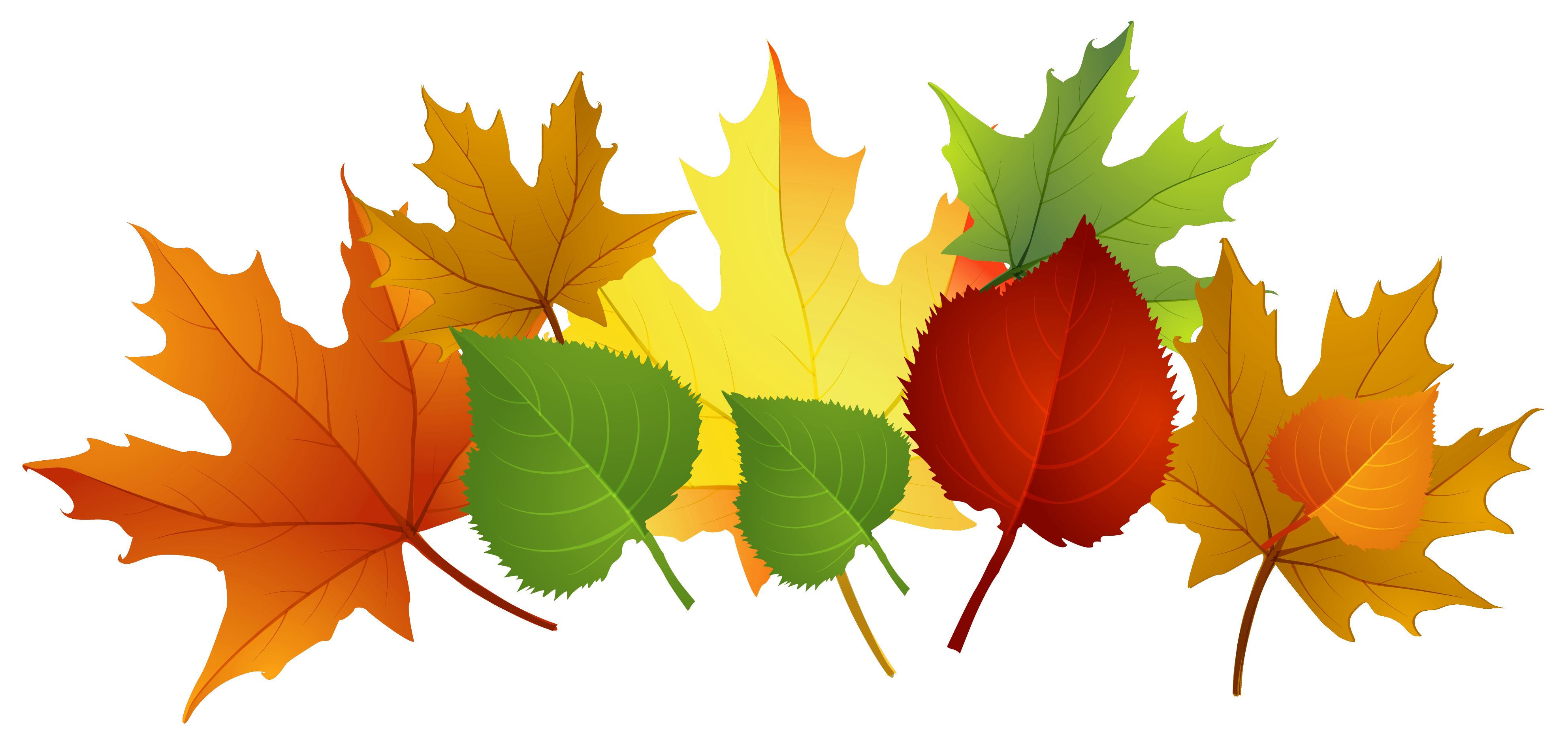 Leaf fall leaves clip art free vector for free download about free ...