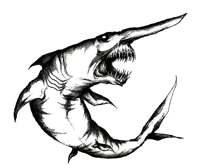 Line Art Shark : Shark sketch clipart best
