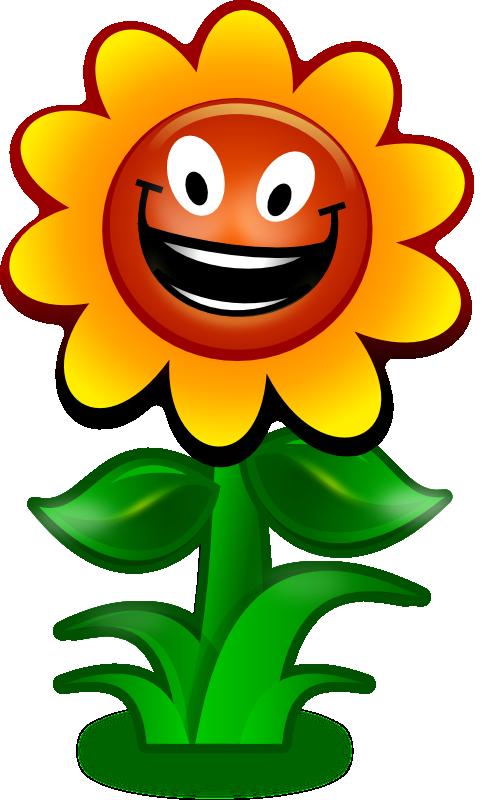 sun flower cartoon clipart best