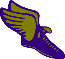 Track shoes with wings