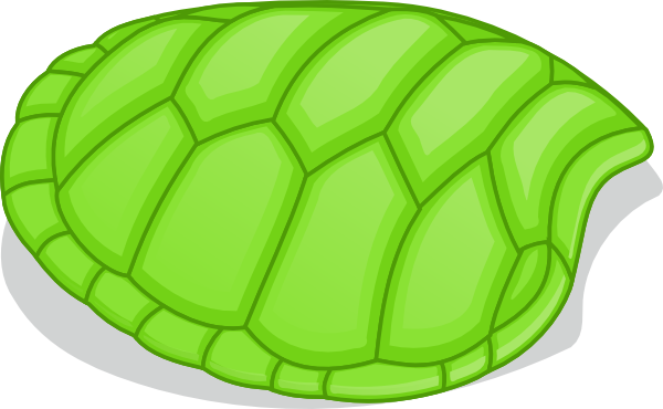 Turtle Shell Pattern - ClipArt Best