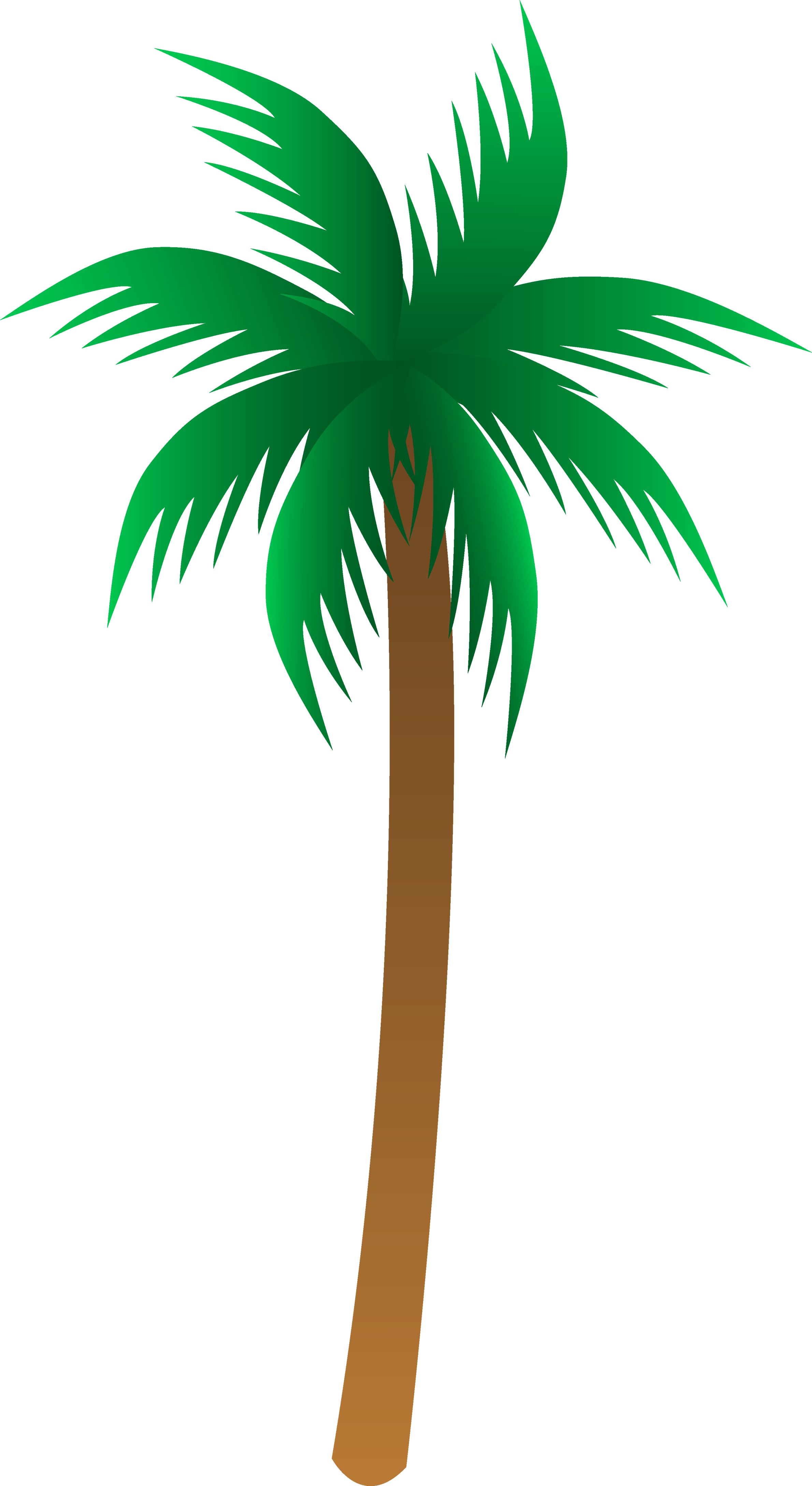 Palmtree Image Clipart Best