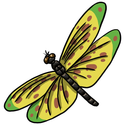 FREE Dragonfly Clip Art 20 - ClipArt Best - ClipArt Best