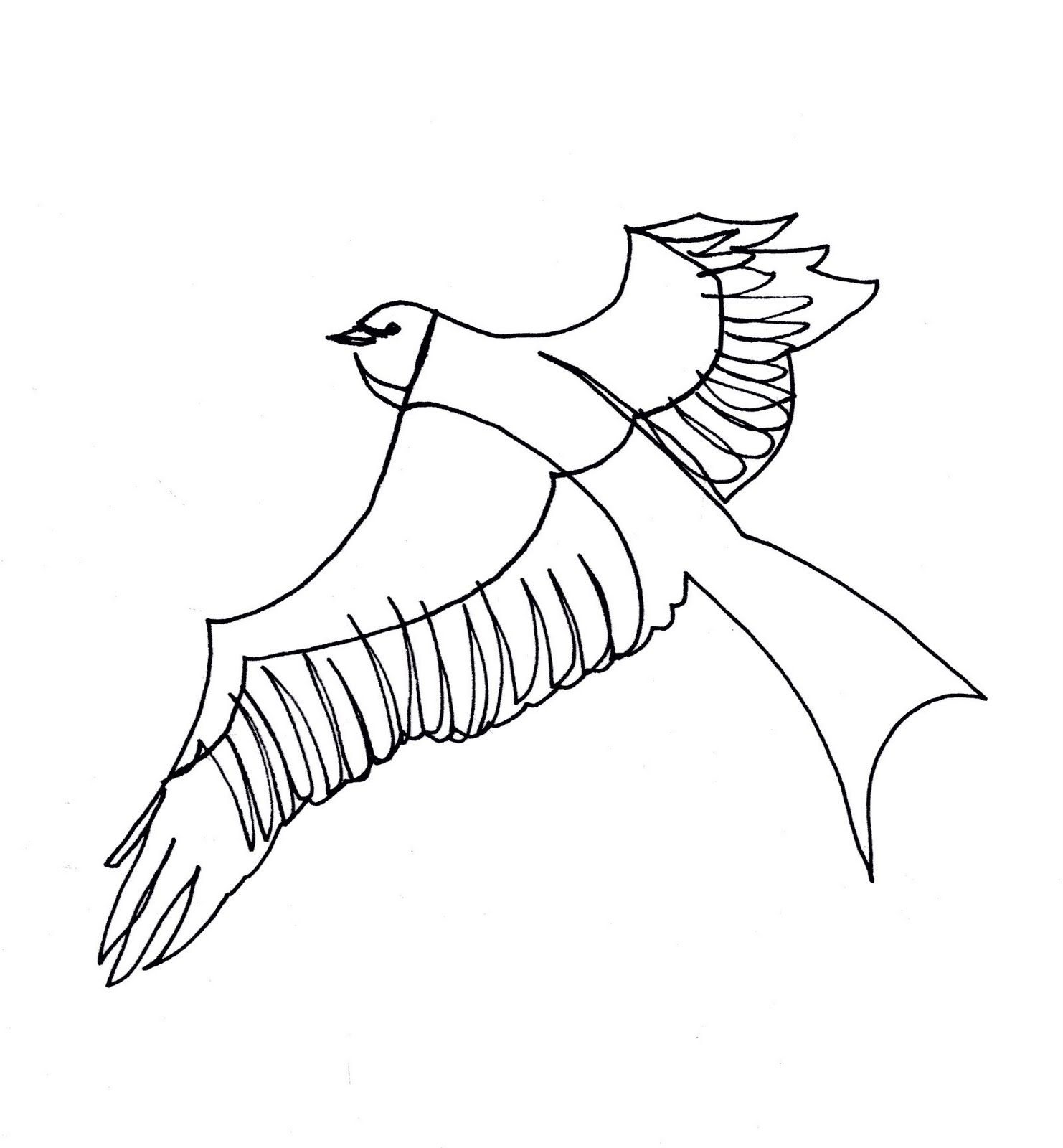 Line Art Bird : Flying bird line drawing