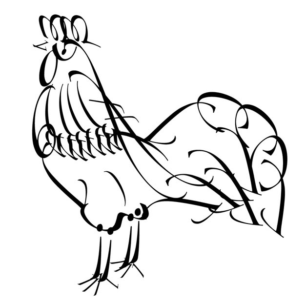 Line Drawing Chicken : Chicken line drawing clipart best