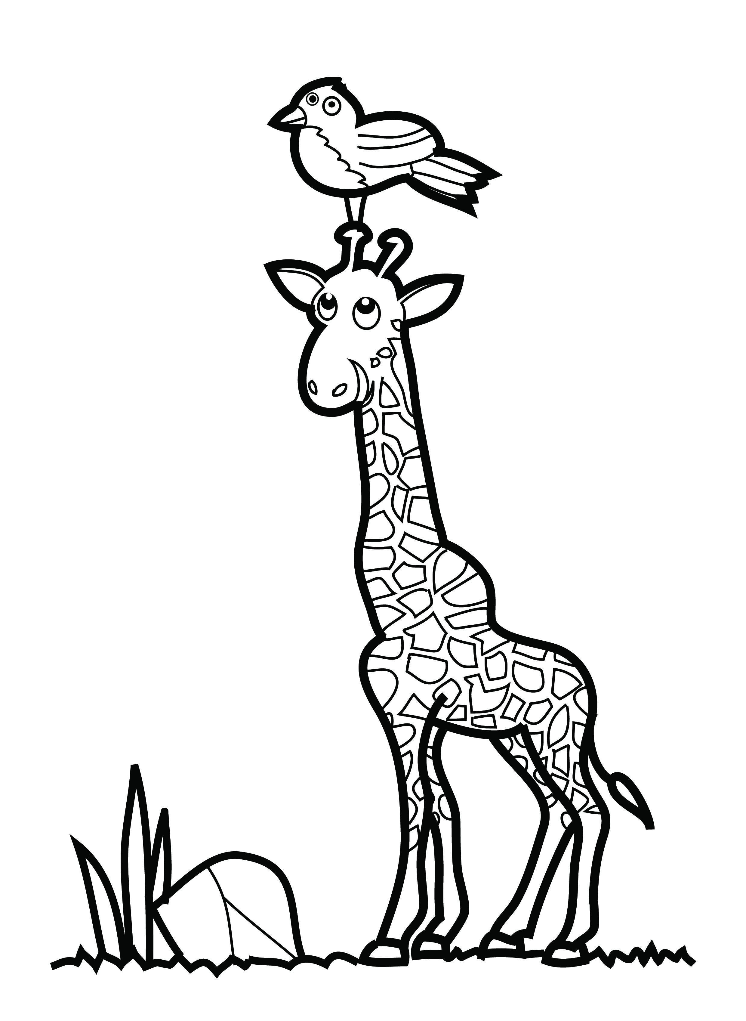 coloring and drawing pages - photo#24
