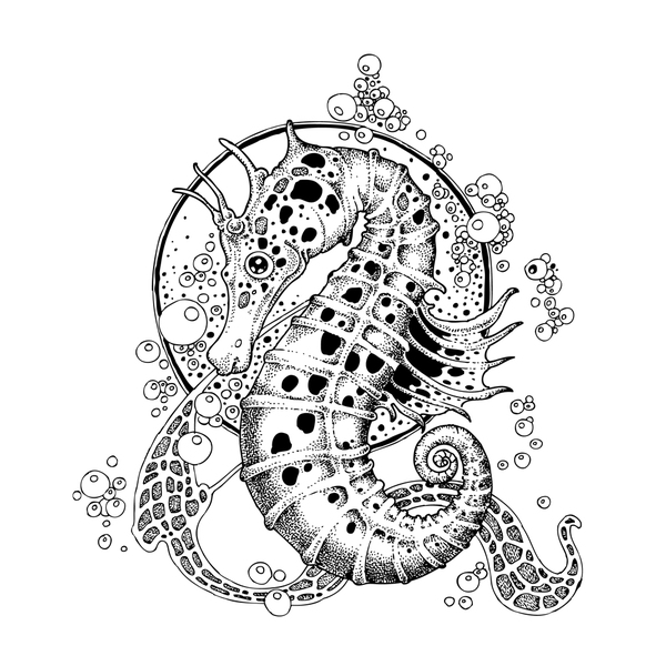 dkt printable coloring pages - photo#29