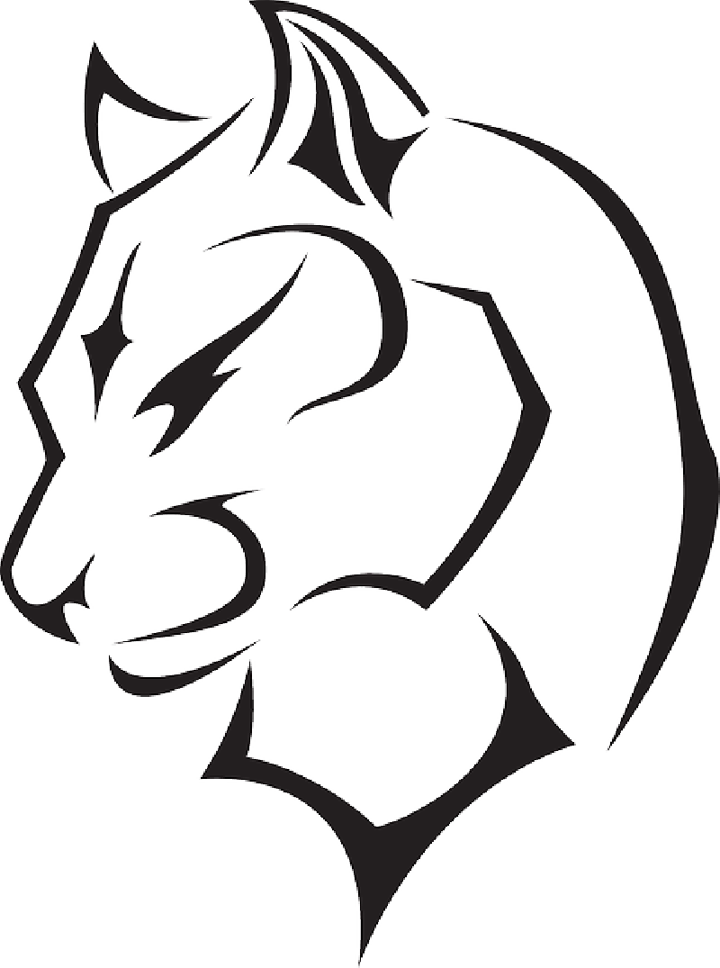 Cougar Face Line Drawing : Panther drawing outline clipart best