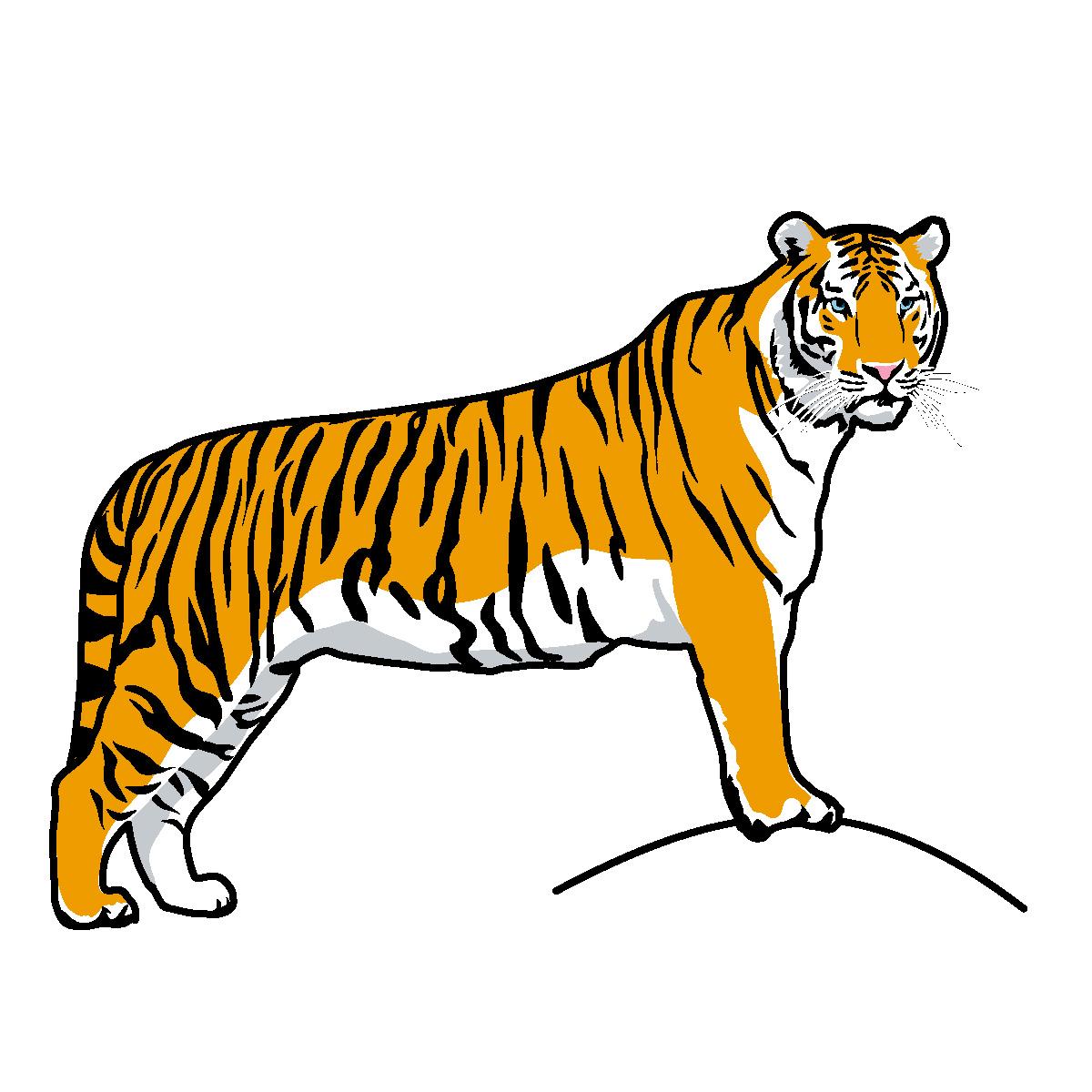 Bengal Tiger Clip Art - ClipArt Best