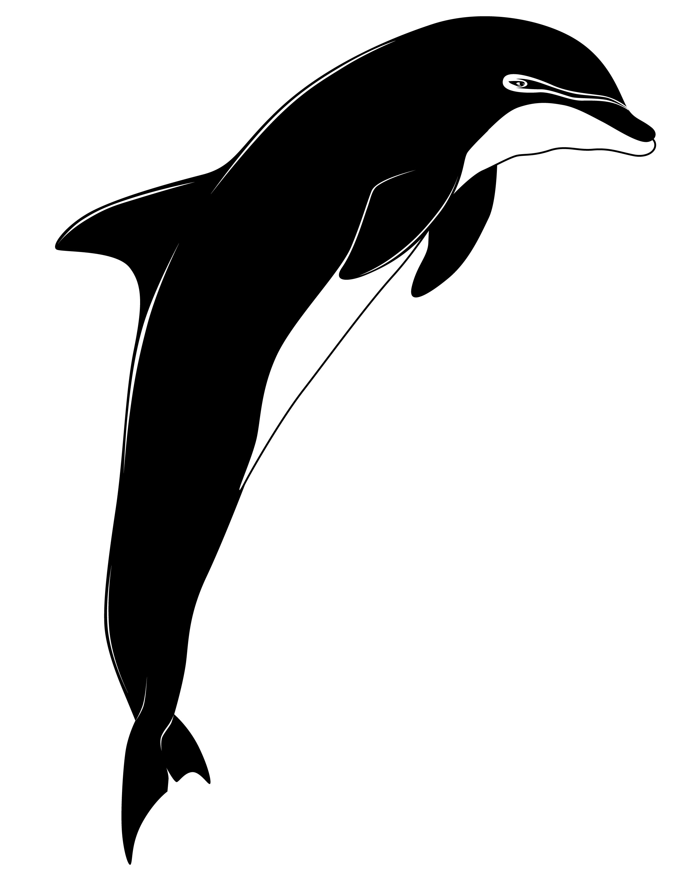 Dolphin In Black And White - ClipArt Best