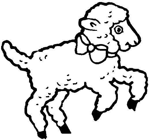 Coloring Pages Of Baby Lamb - ClipArt Best