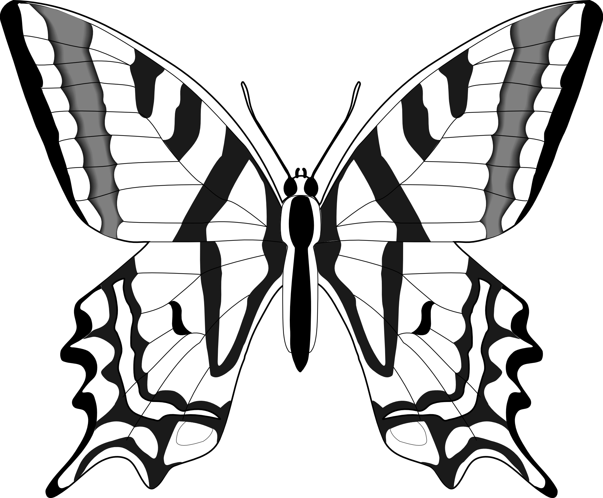 Black White Butterfly Images - ClipArt Best
