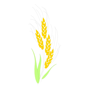 Free Clipart Of Wheat - ClipArt Best
