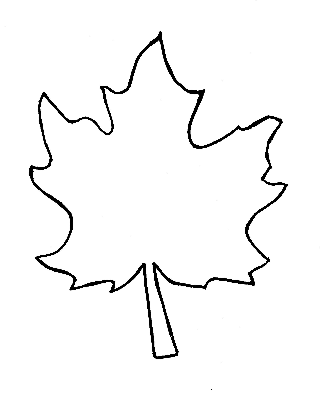 Leaf Shape Templates Clipart Best