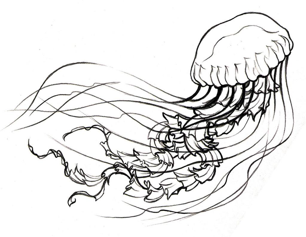 Jellyfish Tattoo Designs Tumblr