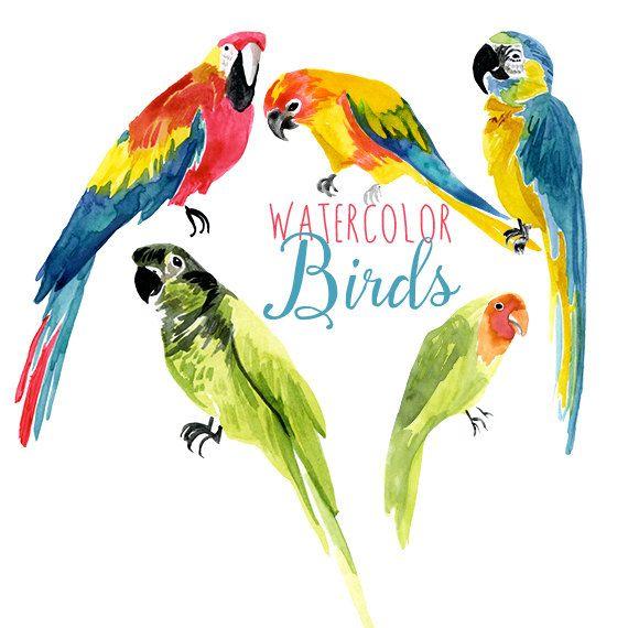 Clip Art Of Birds - ClipArt Best