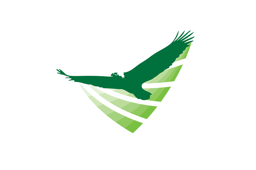 Green Eagle Logo Design