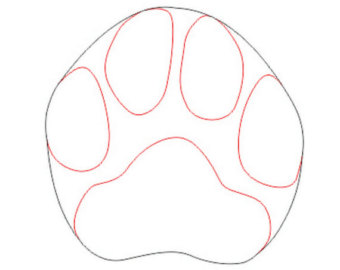 Panther paw coloring pge clipart best for Panther paw coloring page