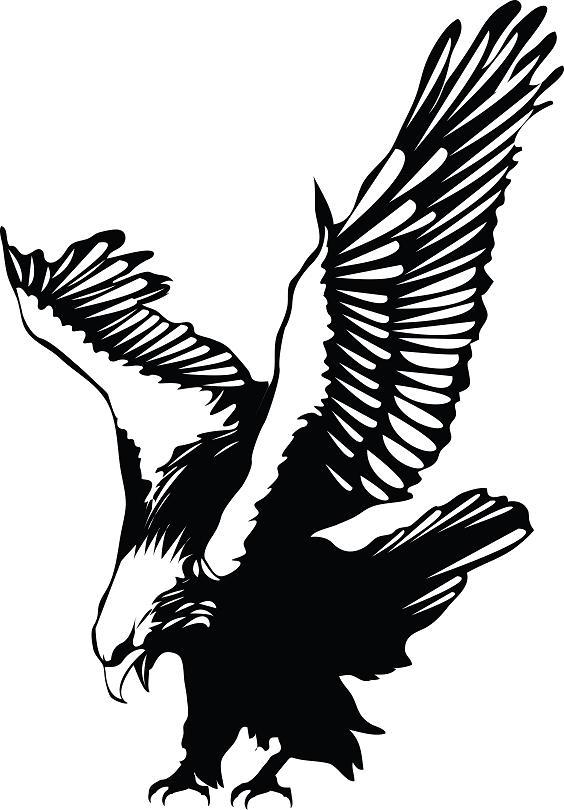 free polish eagle clip art - photo #13